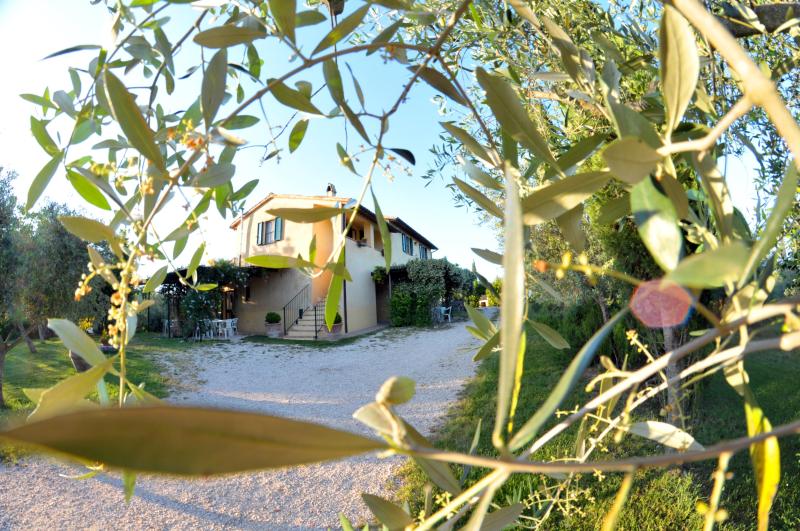Azienda la fonte 275503,Apartamento grande en Bevagna, Umbria, Italia  con piscina privada para 3 personas...