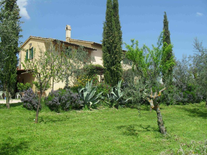 Azienda la fonte 275504,Apartamento grande  con piscina privada en Bevagna, Umbria, Italia para 5 personas...