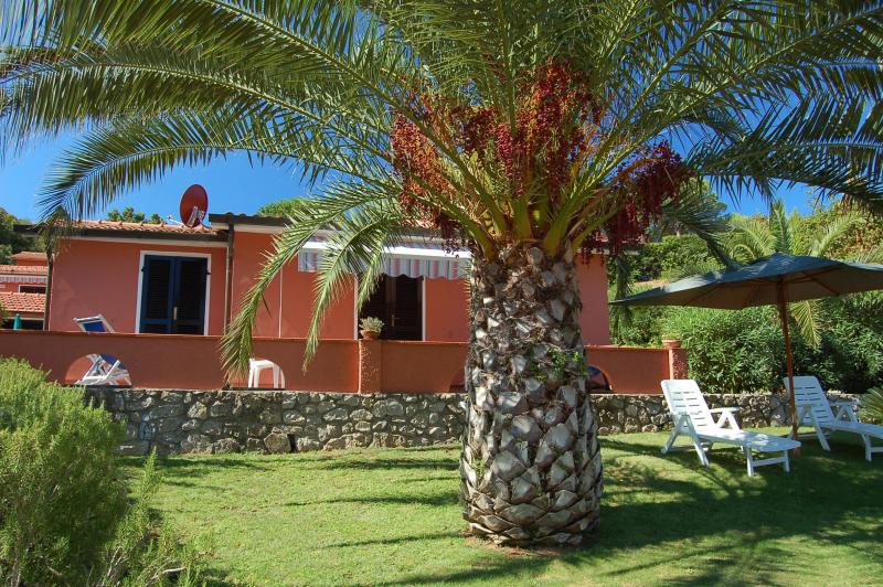 Mareblu 276364,Apartamento grande en Straccoligno, Elba, Italia para 3 personas...