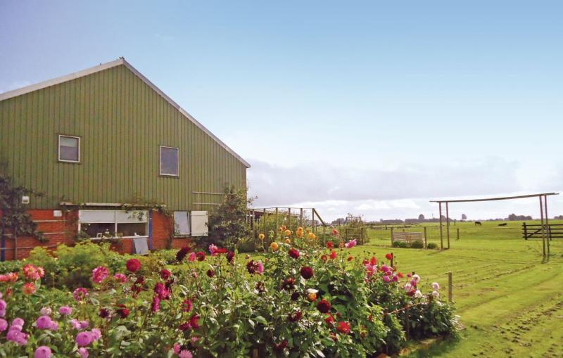 116515,Apartamento en Kollumerpomp, Friesland, Holanda para 8 personas...