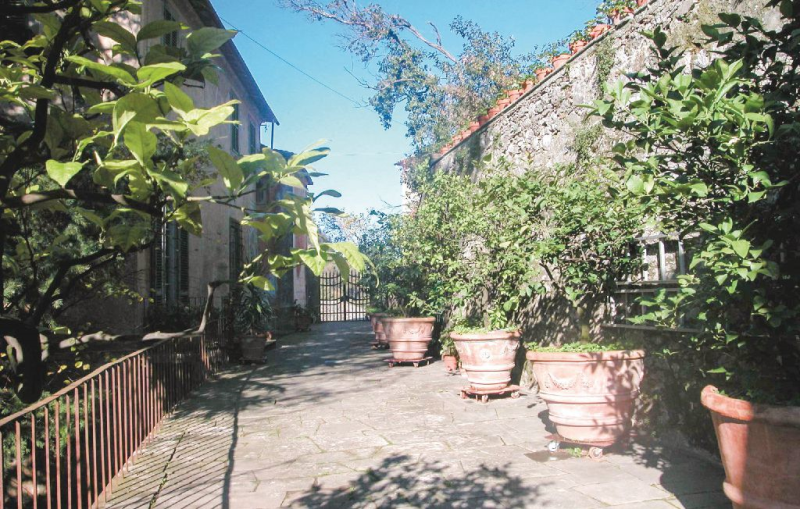Villa azzi  app grazia 117090,Appartement à Cardoso-Gallicano Lu, en Toscane, Italie pour 4 personnes...