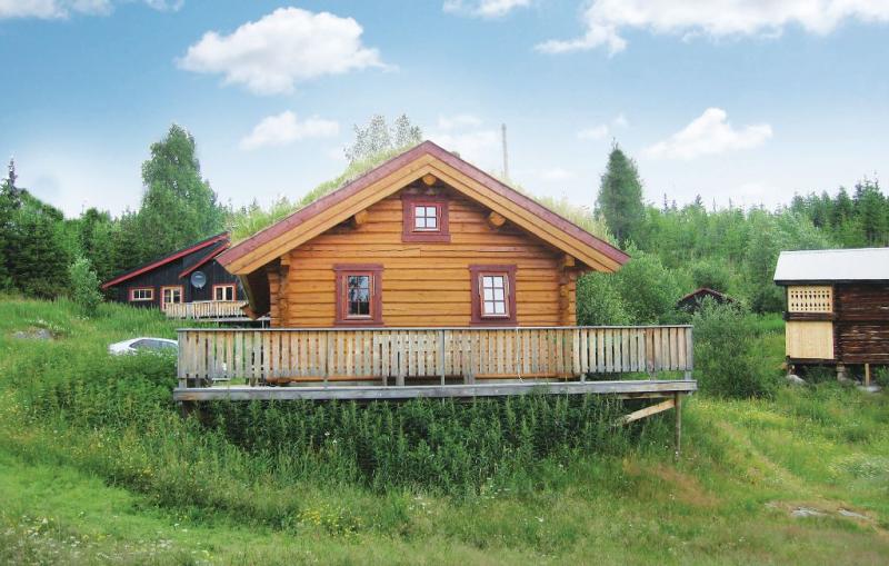 119962,Casa en Gol, Hallingdal-Hemsedal, Noruega para 8 personas...