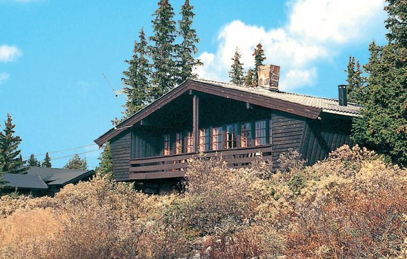 Stjernebu 119985,Casa en Nesbyen, Hallingdal-Hemsedal, Noruega para 7 personas...