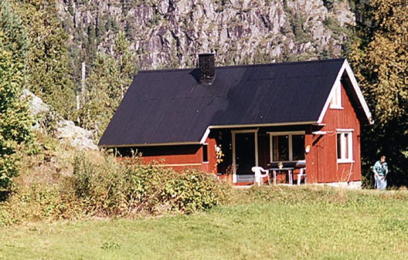 1110201, House in Morgedal, Telemark-Indre Agder, Norway for 6 persons...