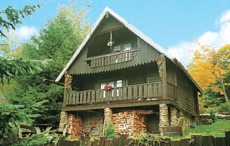 1115414,Maison à Benecko, Královéhradecký kraj, République Tchèque  avec piscine communale pour 4 personnes...