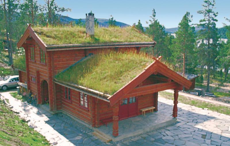 1143388,Casa en Tynset, Østerdalen, Noruega para 8 personas...