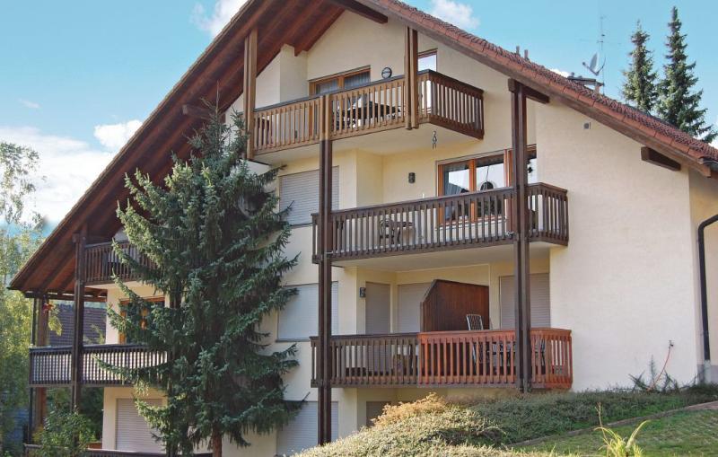 1176770,Apartamento  con piscina comunitaria en Todtmoos, Lake Constance, Alemania para 4 personas...
