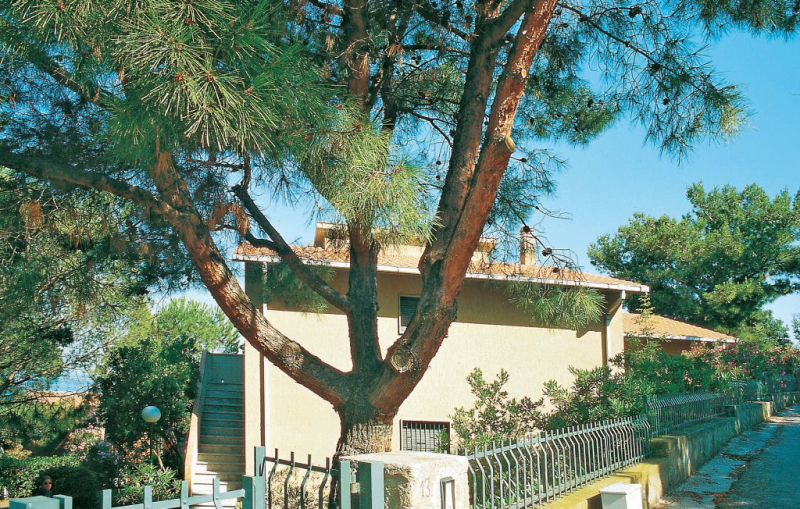Azzurro 2 1157470,Apartamento en Puntone Scarlino Gr, en Toscana, Italia para 5 personas...
