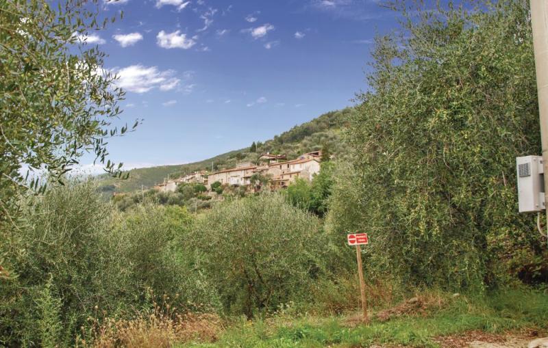 1163685,Vivienda de vacaciones en Buchignano Lu, en Toscana, Italia para 3 personas...