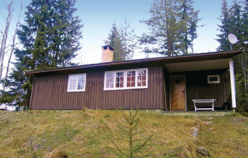 1177385,Casa en Hurdal, Oslo and surroundings, Noruega para 6 personas...