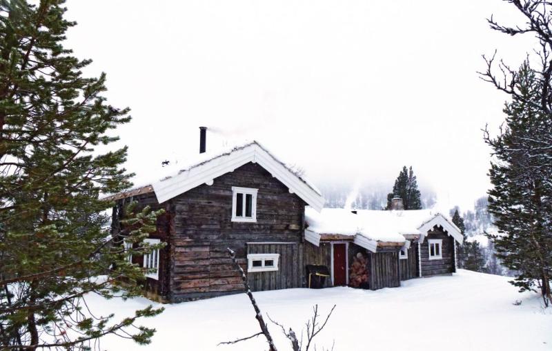 1179161,Casa en Tynset, Østerdalen, Noruega para 11 personas...
