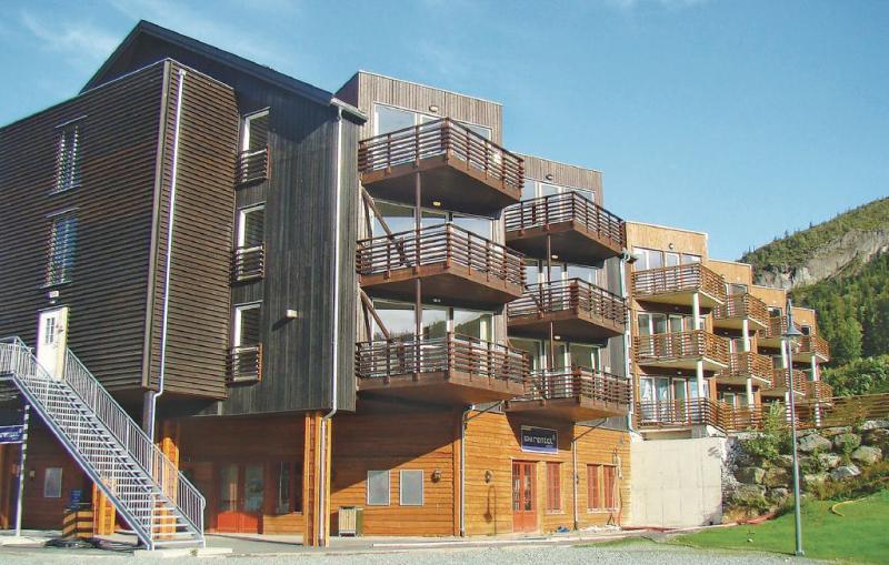 1182386,Apartment in Hemsedal, Hallingdal-Hemsedal, Norway for 6 persons...
