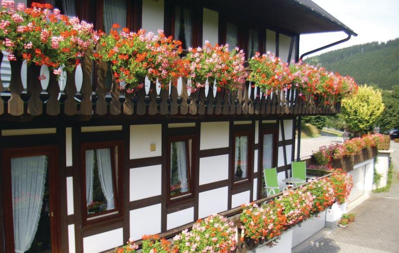 1195462,Apartamento en Schmallenberg, Sauerland, Alemania para 3 personas...