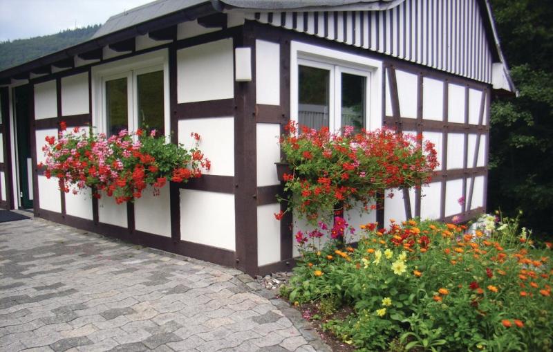 1195466,Casa en Schmallenberg, Sauerland, Alemania para 4 personas...