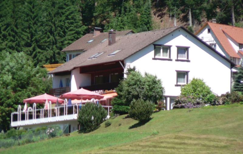 1195857,Apartamento en Baiersbronn-mitteltal, Lake Constance, Alemania  con piscina comunitaria para 3 personas...