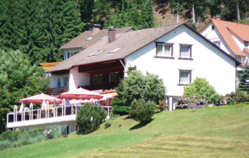 1195866,Apartamento en Baiersbronn-mitteltal, Lake Constance, Alemania  con piscina comunitaria para 3 personas...