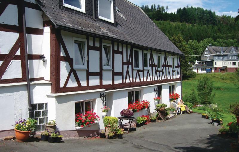 1199057,Apartamento  con piscina comunitaria en Bad Berleburg-Bergh., Sauerland, Alemania para 4 personas...
