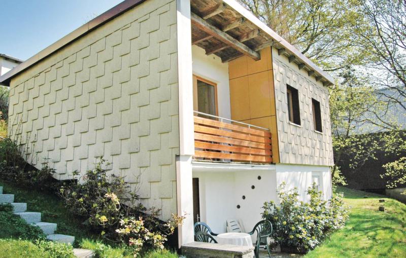 1199251,Casa  con piscina comunitaria en Schwarzenbach A.wald, Bavaria, Alemania para 6 personas...