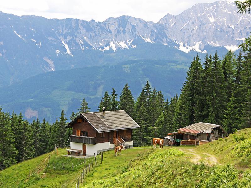 Wassertheureralm 141242,Vivienda de vacaciones en Dellach, Carinthia, Austria para 6 personas...