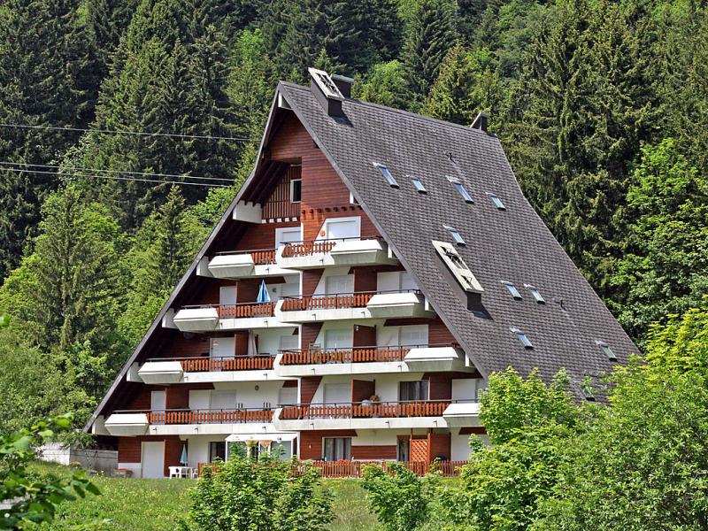Anmone 141453,Vivienda de vacaciones en Gryon, Alpes Vaudoises, Suiza para 4 personas...