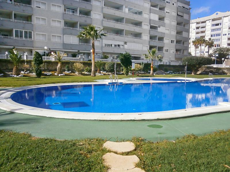 Agua viva 147794,Apartamento  con piscina privada en Benidorm, en la Costa Blanca, España para 4 personas...