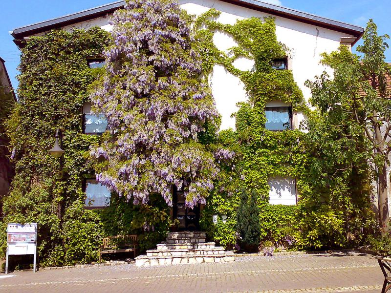 Plath 144717,Apartamento en Nennig, Rhine-Ahr-Lahn, Alemania para 4 personas...