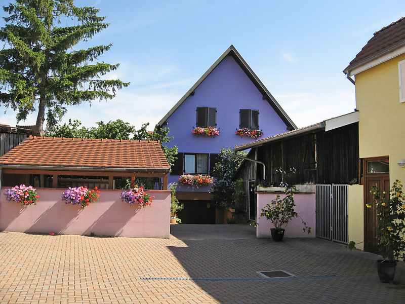 Rsidence jaune et rose 149484,Apartamento en Marckolsheim, Alsace, Francia para 4 personas...