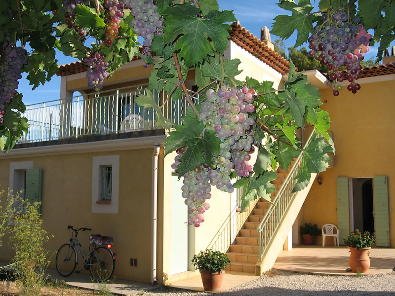 1411833,Apartamento en Six-Fours-les-Plages, Provence-Alpes-Côte d'Azur, Francia para 4 personas...