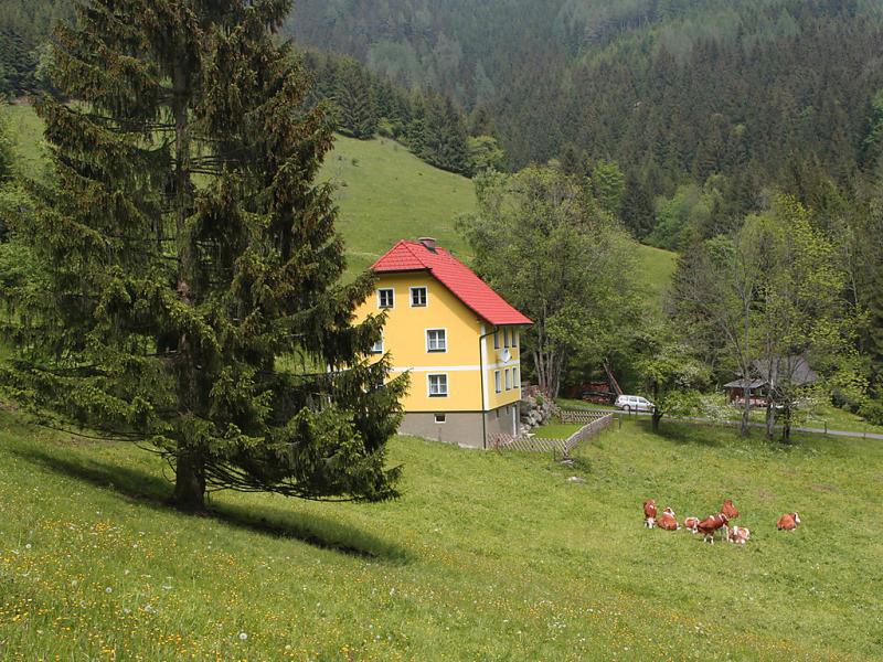 Krechen alm 1421405,Vivienda de vacaciones en Pernegg an der Mur, Styria, Austria para 8 personas...