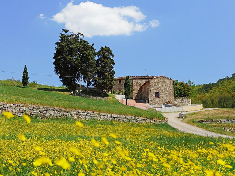 Selvapiana 1422350,Vivienda de vacaciones en Greve in Chianti, en Toscana, Italia  con piscina privada para 6 personas...