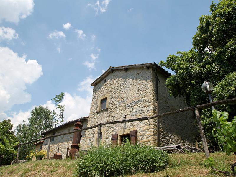 Colombaia 1437328,Villa  con piscina privada en Borgo San Lorenzo, en Toscana, Italia para 12 personas...