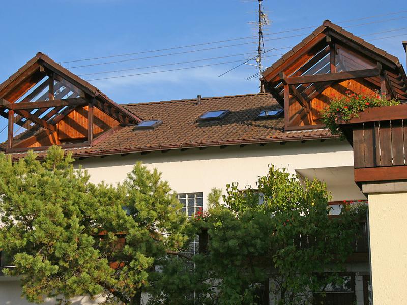 Hilpert 1440933,Apartamento en Dittishausen, Black Forest, Alemania para 2 personas...