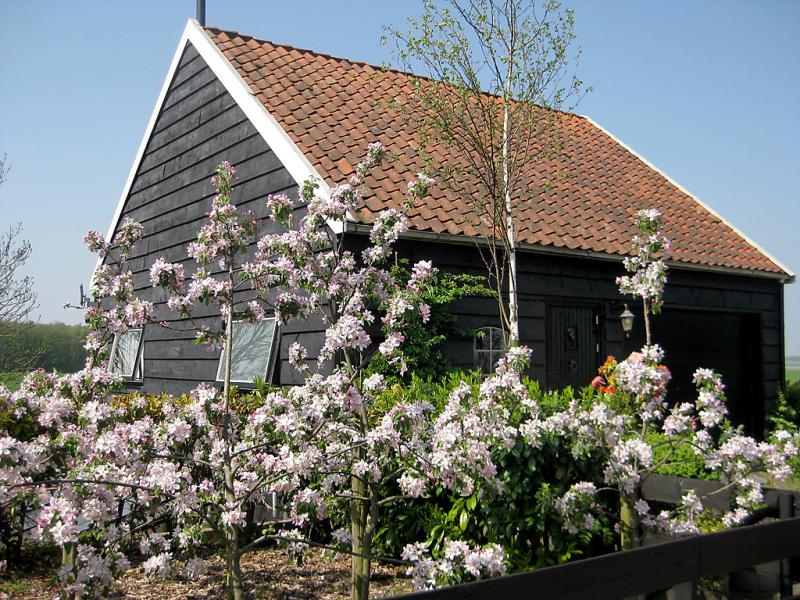 Polderzicht 1457019,Villa en Zuid-Beijerland, Zuid-Holland, Holanda para 2 personas...