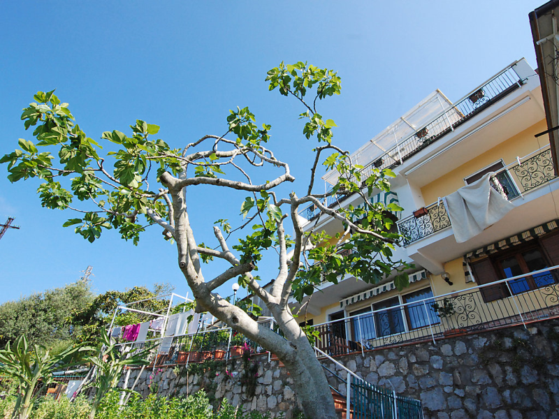 Monalisa  capri view 1463327,Apartamento en Massa Lubrense, Campania, Italia para 4 personas...