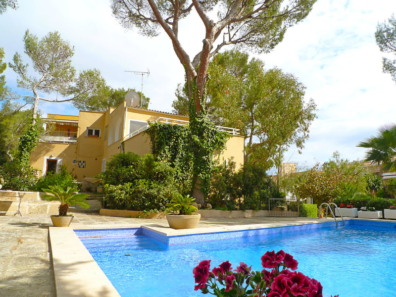 Santa pona 1482131, Holiday house in Santa Ponça, Mallorca, Spain  with private pool for 8 persons...