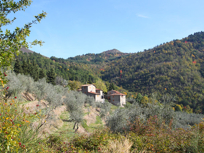 Quercia 1414875,Cuarto de hotel en Reggello, en Toscana, Italia  con piscina privada para 7 personas...