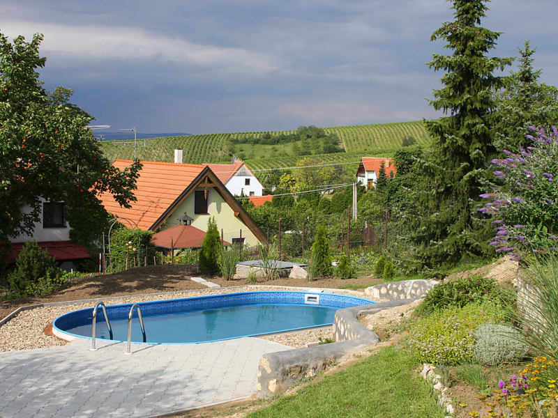 Horni vestonice 1418043,Rural house  with private pool in Horni Vestonice, South Moravia, Czech Republic for 5 persons...