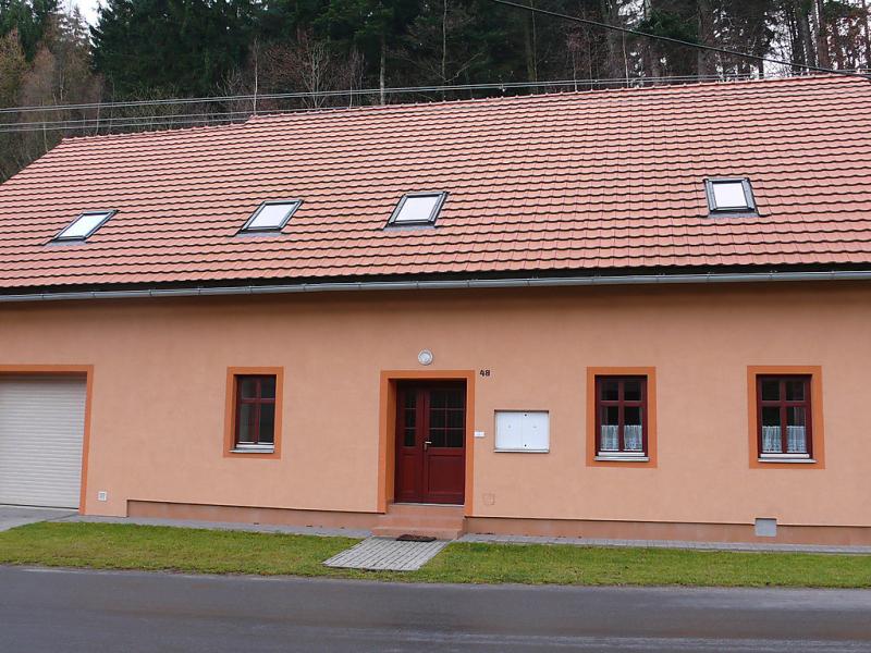 Petrovice 1452853,Casa rural en Jablonne nad Orlici, Pardubický kraj, Chequia para 12 personas...