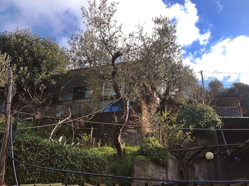 Sunlight 1493584,Casa rural en Massa Lubrense, Campania, Italia para 6 personas...