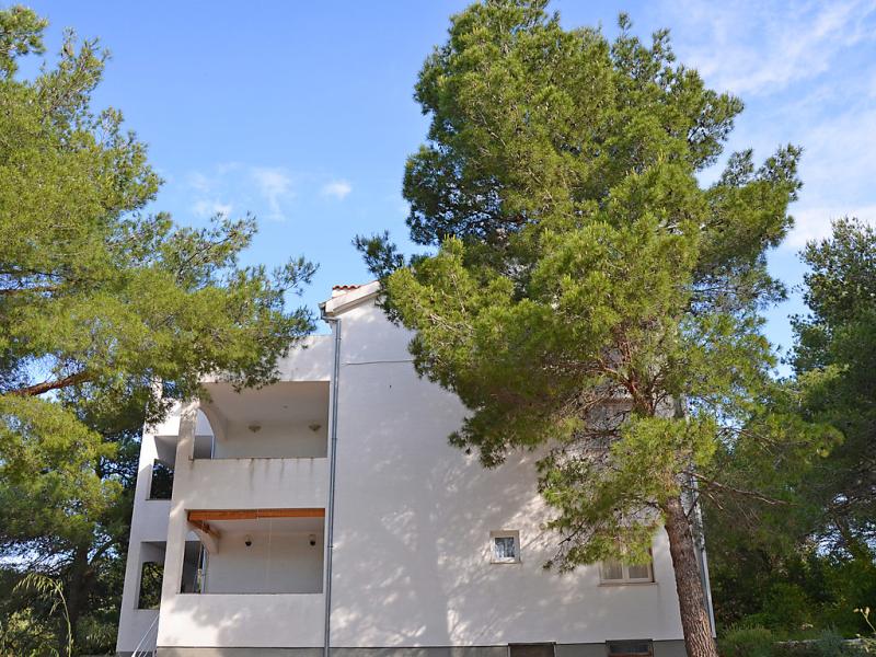 1494851,Apartamento en Vodice-Tribunj, Central Dalmatia, Croacia para 4 personas...