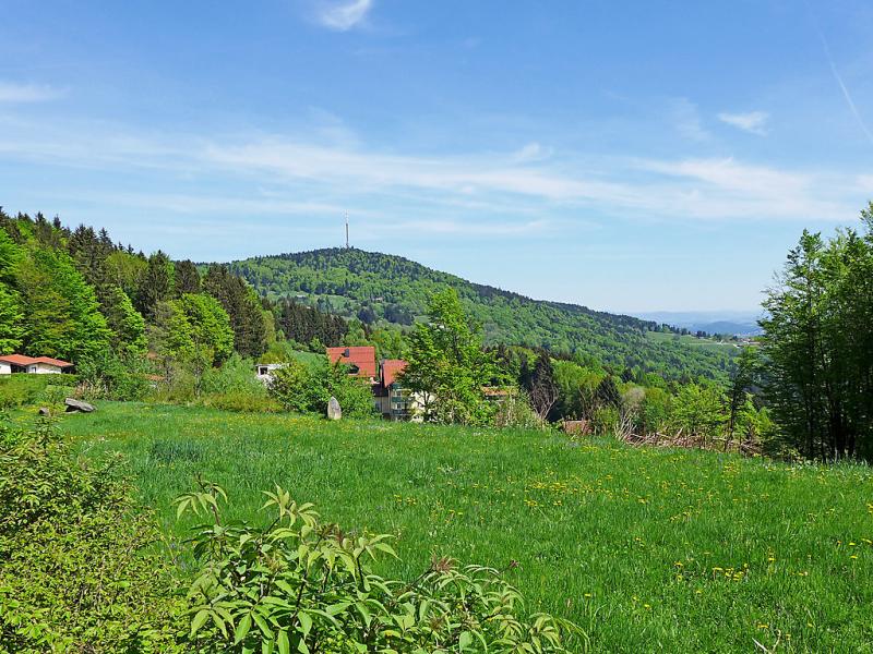 Steinberg 1496316,Casa rural  con piscina privada en Schöfweg, Bavarian Forest, Alemania para 4 personas...