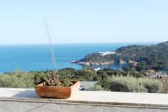 Les oliveres apartamento con gran terraza  vistas al mar dispone de piscina comunitaria y garaje situado entre aiguablava y begur en la costa brava